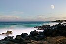 the shores of poipu by Flux Photography