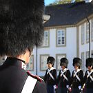 Changing of the guards, Fredensborg Palace, Denmark by Gavin Craig
