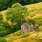 Dentdale Barn by Trevor Kersley