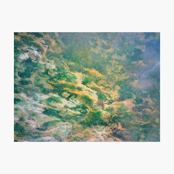 Fishless Reef (Serpentine Verdite) Photographic Print