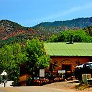 Laughing Lizard Cafe, Jemez Springs, New Mexico by F.  Kevin  Wynkoop