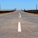 Road to Saldanha by TannFotografia