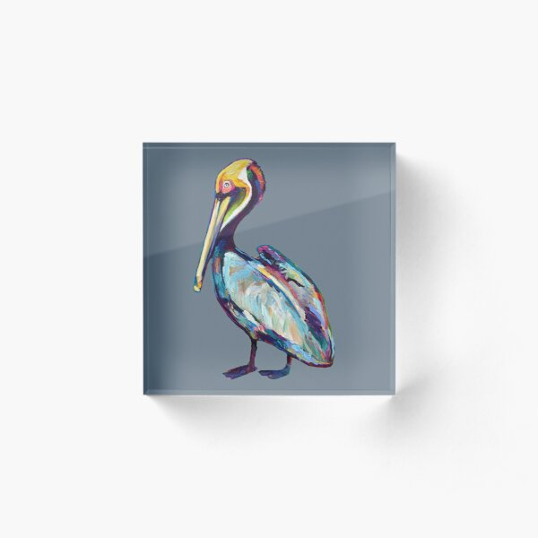 Colorful Pelican by Robert Phelps Acrylic Block