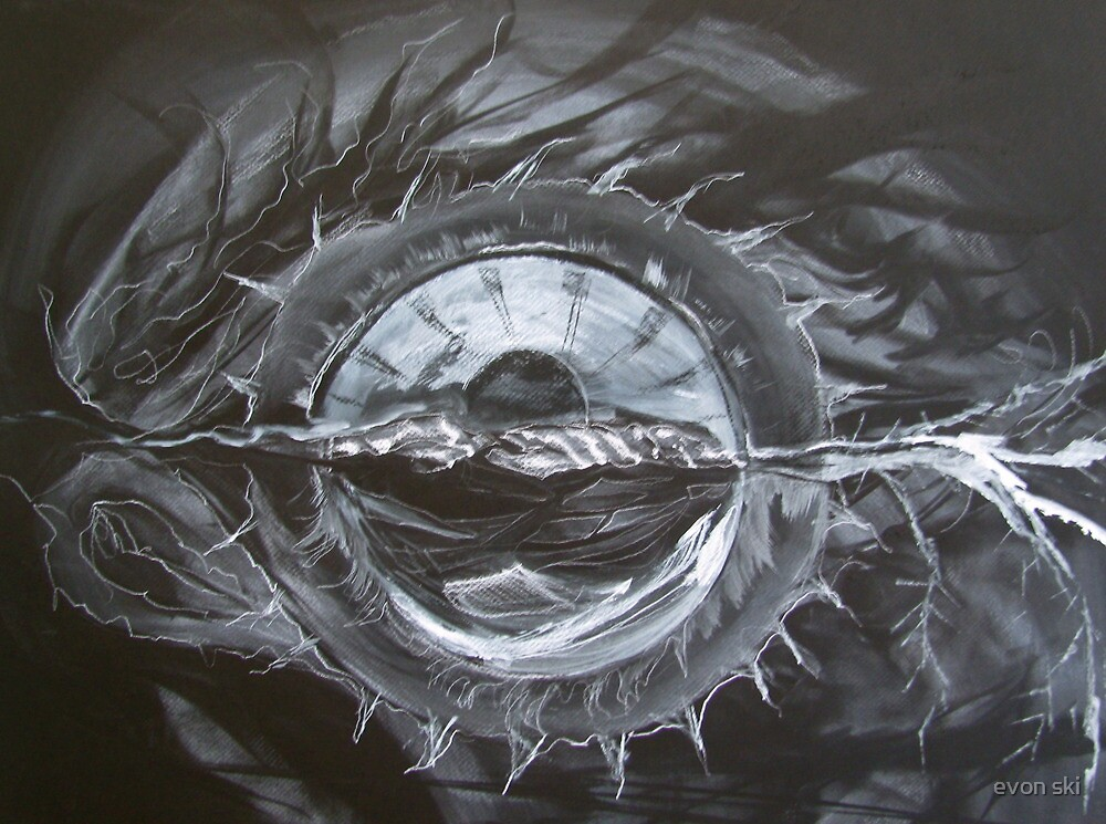 Eye . .  don't Know . . . by evon ski