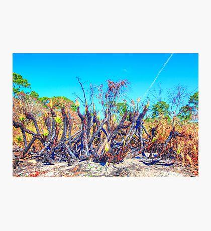 Meteor Fire Photographic Print