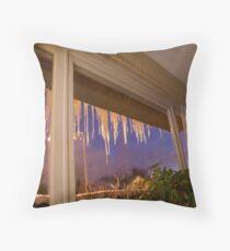 Winter 2010 - Belgium Throw Pillow