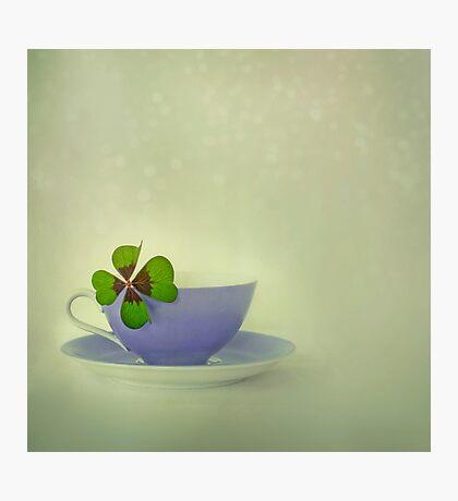 Little Luck Photographic Print