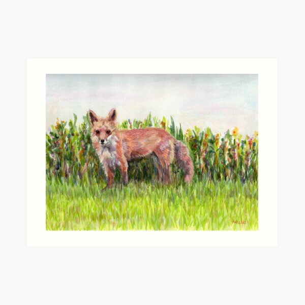 Fantastic Ms Fox, from watercolor painting of a mother red fox in Pennsylvania. by Pamela Parsons Art Print