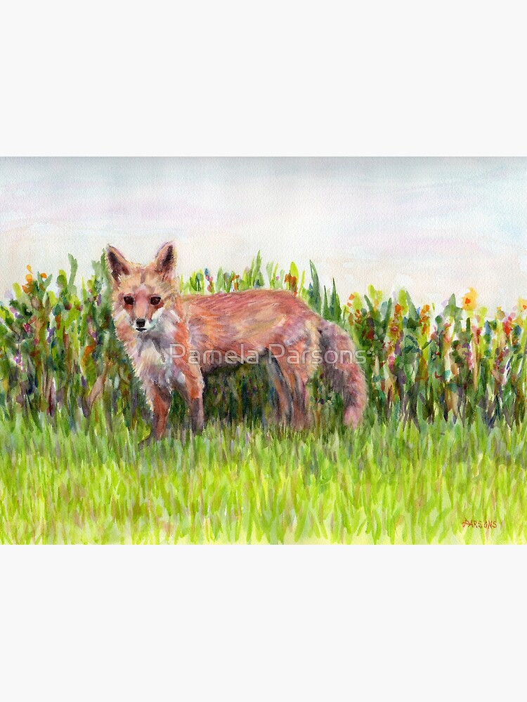Fantastic Ms Fox, from watercolor painting of a mother red fox in Pennsylvania. by Pamela Parsons by parsonsp