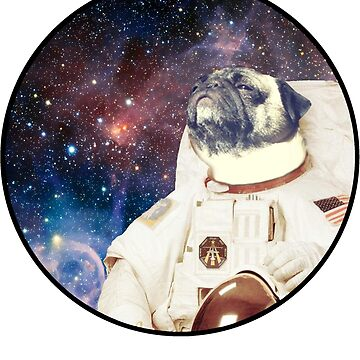 Astro Pug by GingerNips26
