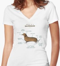 Anatomy of a Dachshund Women's Fitted V-Neck T-Shirt