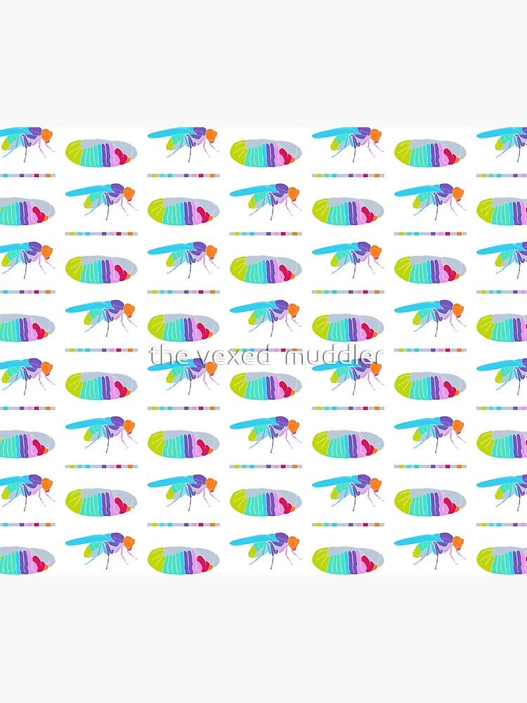 Drosophila Hox Genes  by thevexedmuddler