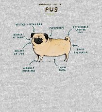 Anatomy of a Pug Kids Pullover Hoodie
