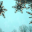 Snow flakes by nanasx4