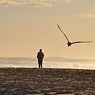 Quiet Contemplation - Redhead Beach Sunset  by Bev Woodman