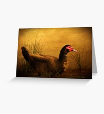 Maurice the Muscovy Greeting Card