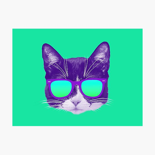 Cool Cat with Sunglasses Photographic Print