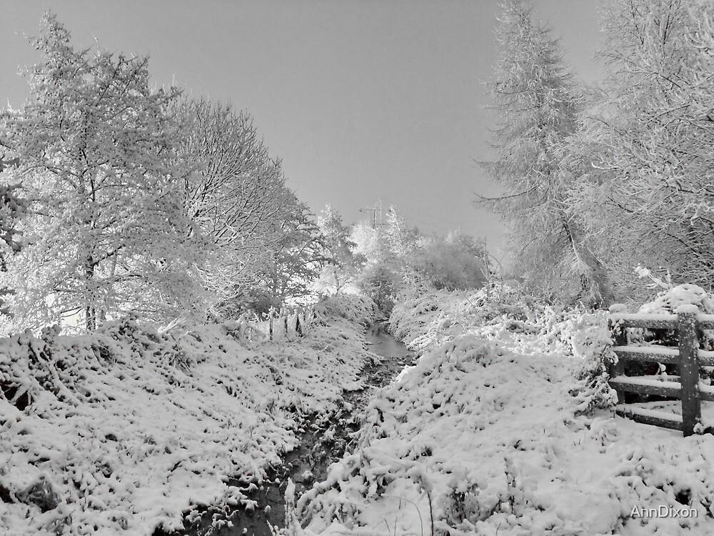 More Snow to Come by AnnDixon