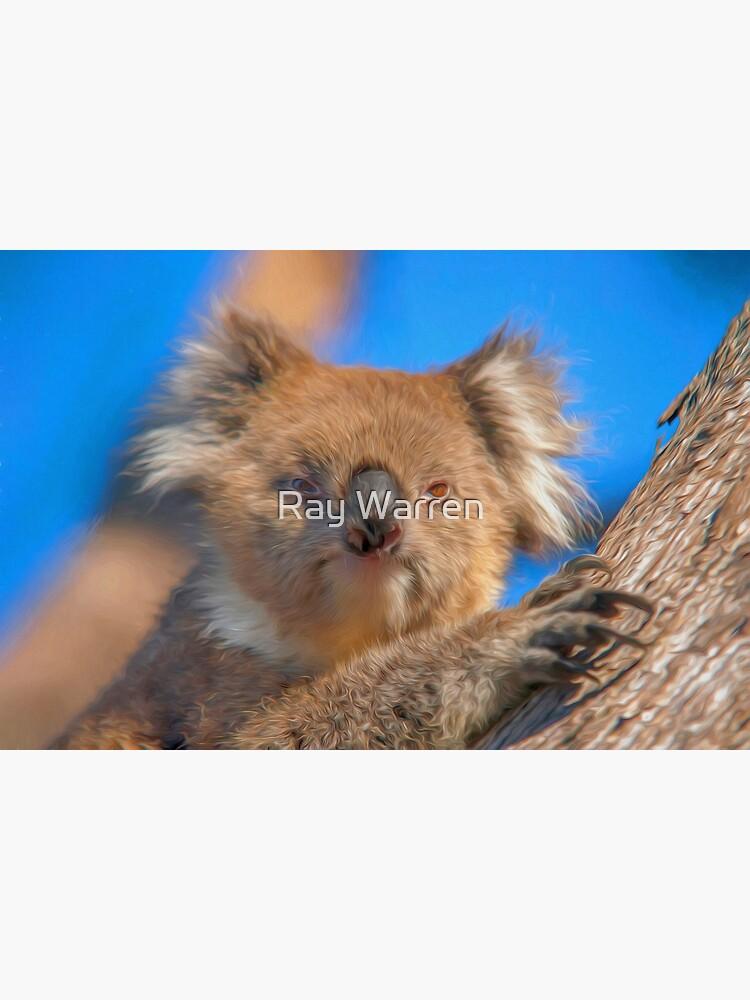 Cute Koala (digital painting) by RayW