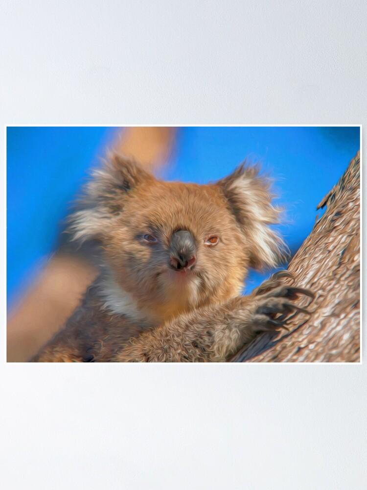 Alternate view of Cute Koala (digital painting) Poster