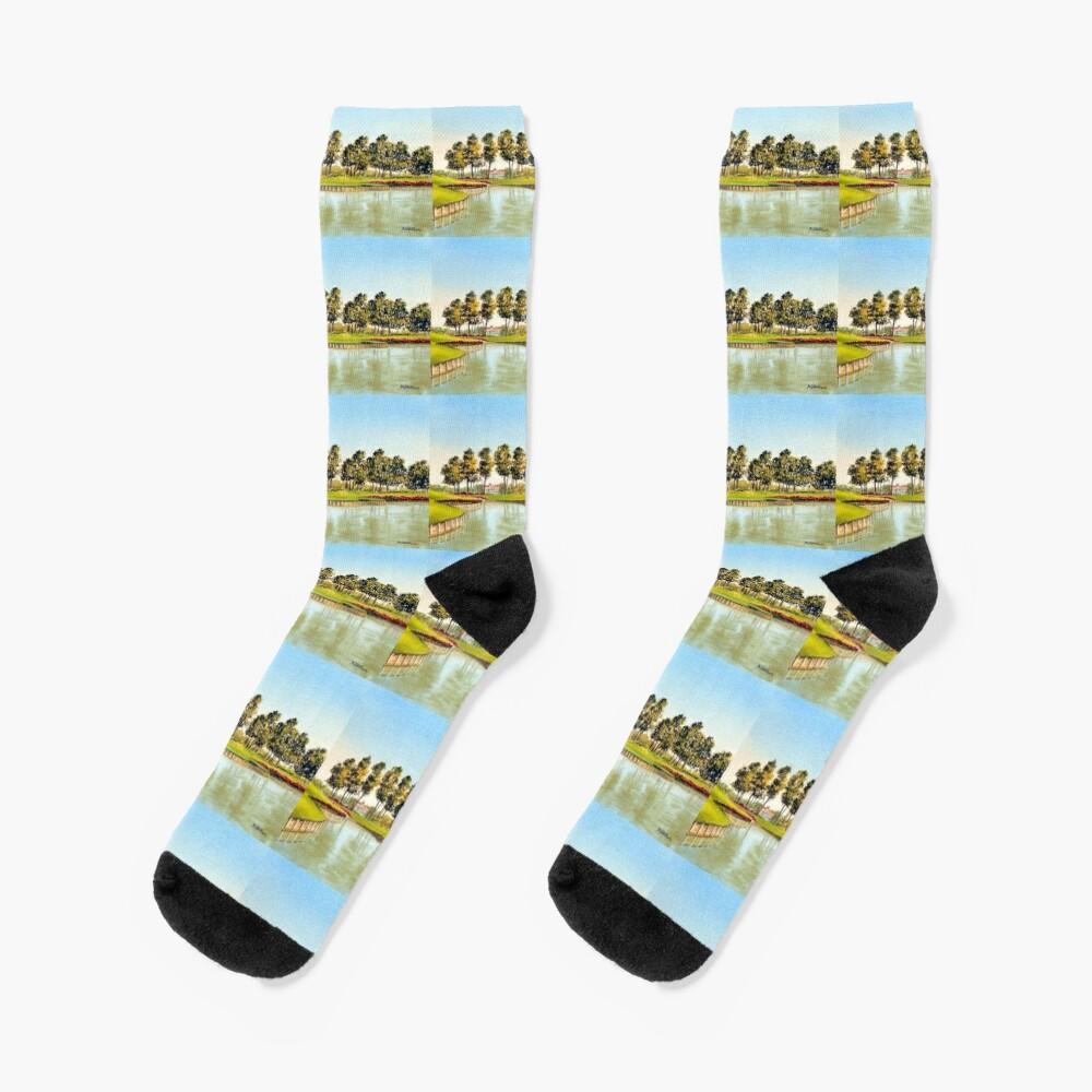 Sawgrass Golf Course Hole 17 Socks