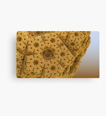 Sandy dodecahedral gasket Canvas Print