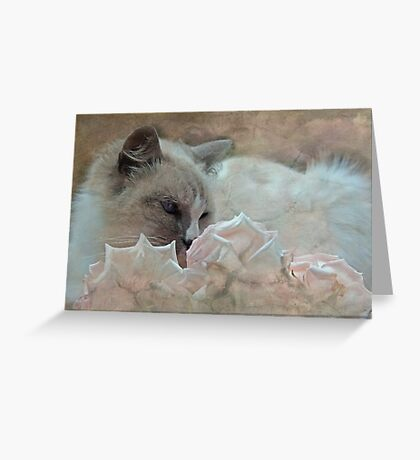 """As Gentle as a Kitten ..."" Greeting Card"