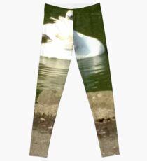 Merch #45 -- Swan - Shot 3 Leggings