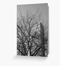 Penthouse Obstruction  Greeting Card