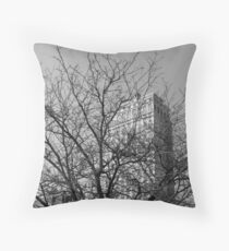 Penthouse Obstruction  Throw Pillow
