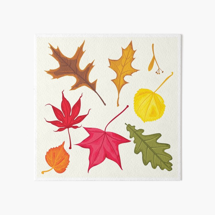 Autumn Leaves Art Board Print