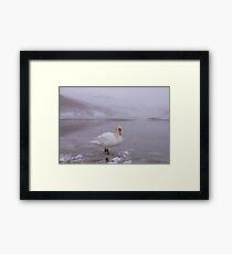 The Lake District: Swan Lake Framed Print