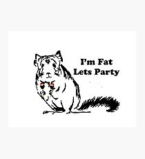 Chinchilla like to Party becuase theyre fat Photographic Print