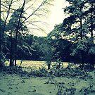 winter wonderland. by winterwonderz