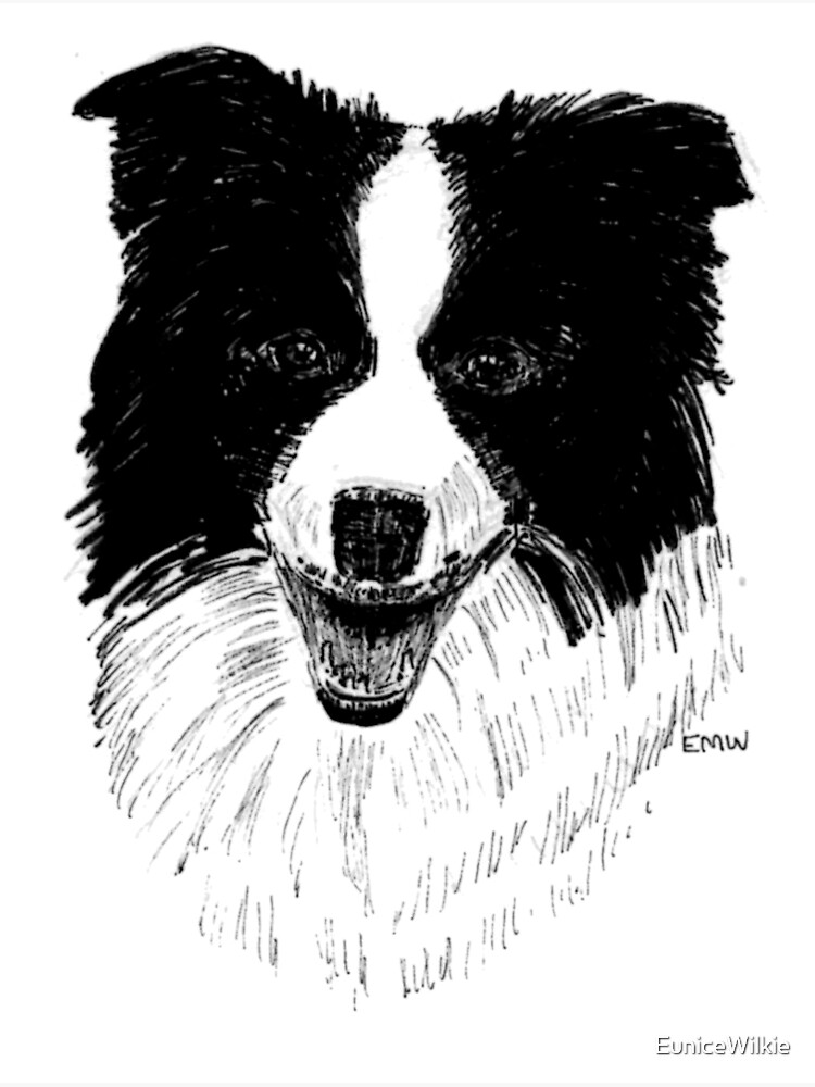 Border Collie - Wall Art by EuniceWilkie