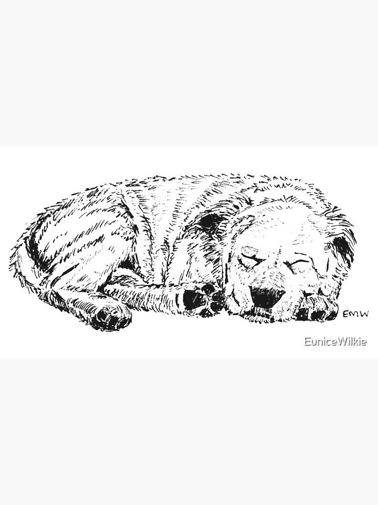 Let Sleeping Dogs Lie - Wall Art by EuniceWilkie