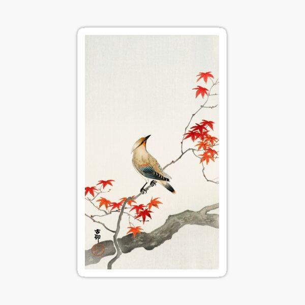 Japanese plague bird on maple Sticker