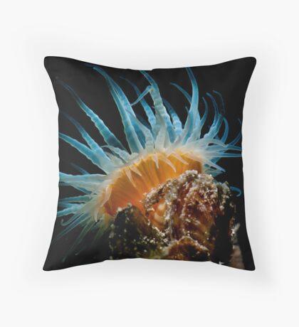 Satellite Dish Throw Pillow