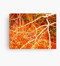 In the Heart of the Mind Canvas Print