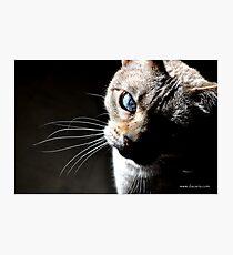Mia Photographic Print