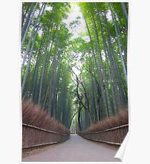 Arashiyama Bamboo Forest Poster