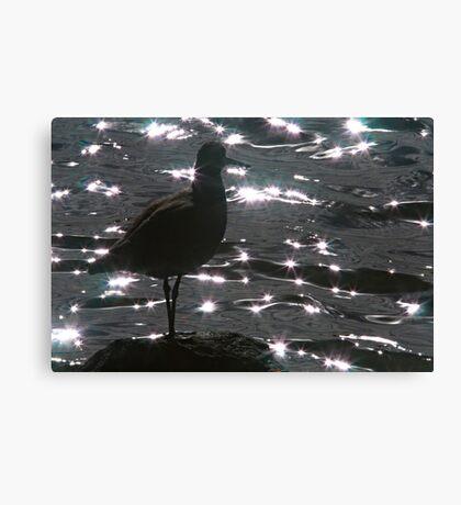 Willett Silhouette Canvas Print