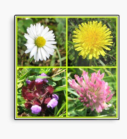 Wildflowers Collage Metallbild