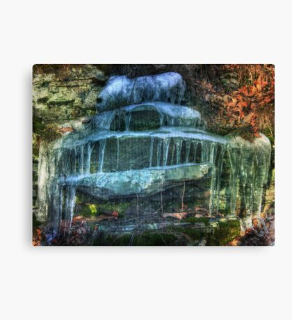 Nature's Layered Cake Canvas Print