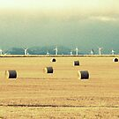 Turbines and Bales by eleveneleven