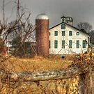 Afternoon in Perry County by Lori Deiter