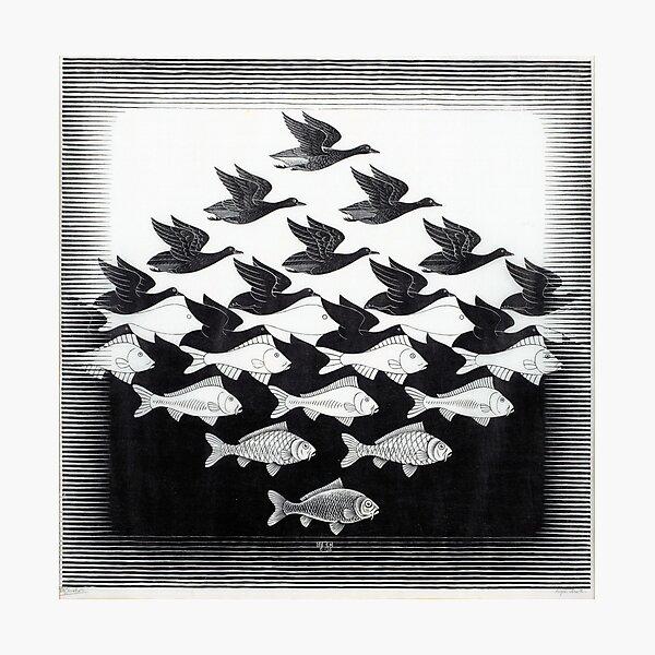 MC Escher Sky and Water I 1938 Obra para carteles Impresiones Camisetas Hombres Mujeres Niños Lámina fotográfica
