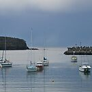 Ulladulla Harbour, After storm, NSW, Australia. by johnrf