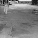 Cat walking (Trailer Park america series) by Elizabeth Rodriguez