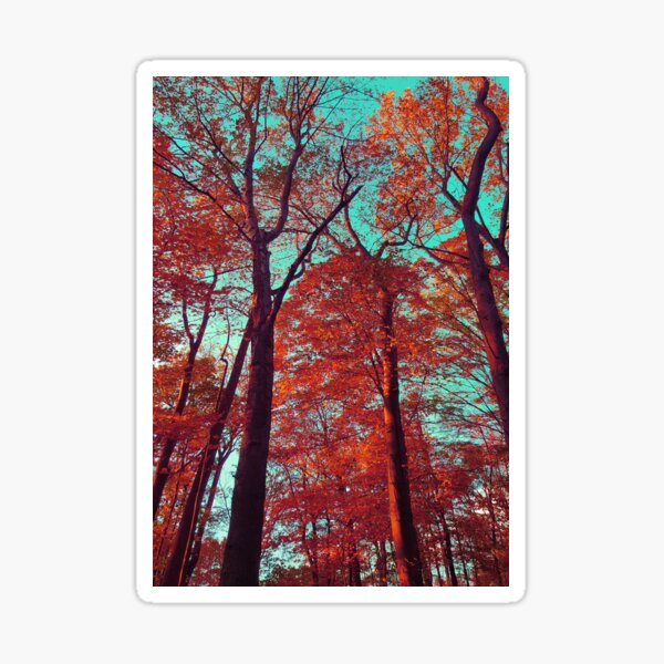 autumn reds II Sticker